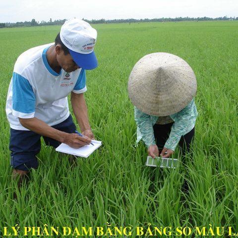 Trung tâm giống nông nghiệp Bạc Liêu: Phát triển nông nghiệp theo hướng nâng cao giá trị gia tăng
