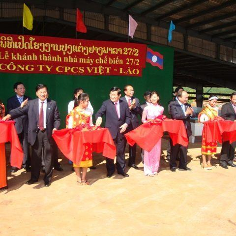 Công ty Cổ phần Xây dựng Cao su Đồng Nai: Góp phần vào sự phát triển của quê hương, đất nước