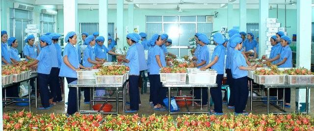 Ngành Ngân hàng tỉnh Bình Thuận – Đồng hành phát triển kinh tế địa phương