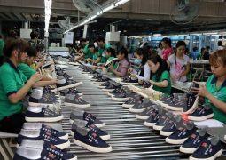 BHXH tỉnh Bình Định: Chính sách bảo hiểm xã hội là trụ cột của an sinh xã hội