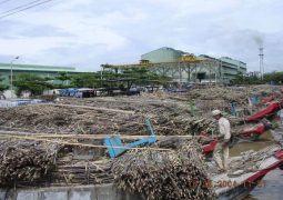 Ngành Công thương Hậu Giang: Tạo bức phá cho Công nghiệp chế biến