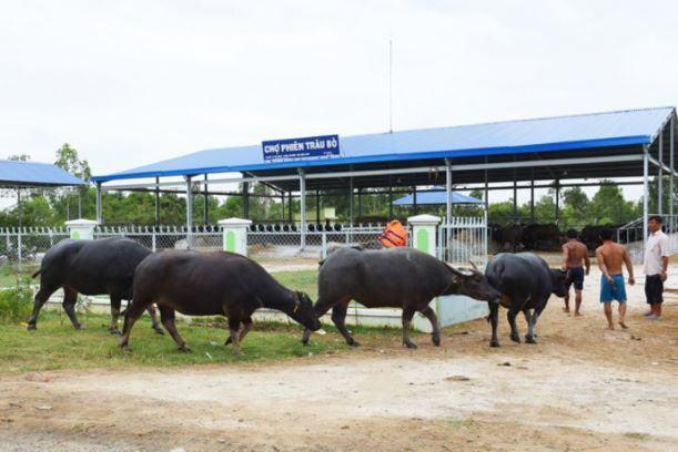Huyện Tân Hồng: Đẩy mạnh phát triển kinh tế cửa khẩu