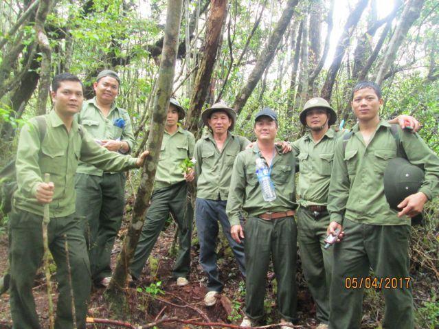 Công ty TNHH MTV Lâm nghiệp Krông Bông – Bền bỉ sứ mệnh trồng, chăm sóc và bảo vệ rừng
