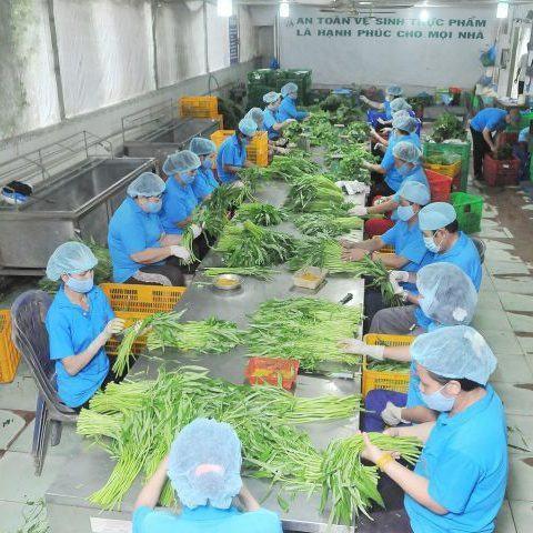 Nông Lắk: Phát triển bền vững 05 đột phá nghiệp Đắk