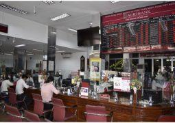 Agribank Đồng Nai: Tiên phong thực thi chính sách hỗ trợ tín dụng